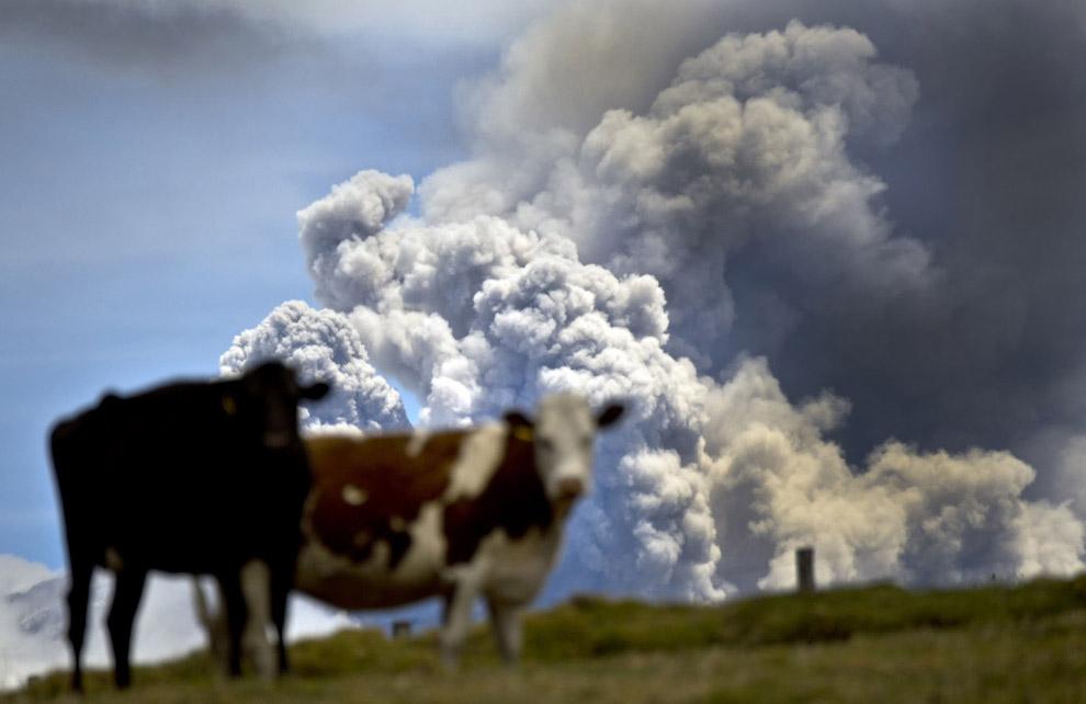 3. Вулкан Вильяррика в Араукании, Чили. Является стратовулканом, достигающим высоты 2847 м. Воз