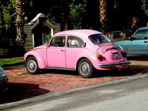 Жук - кайфер - розовый