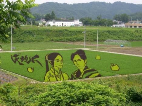 творчество японских фермеров