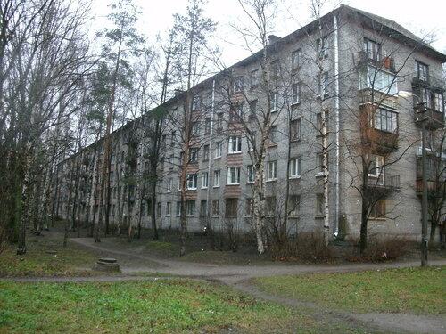 ул. Хлопина 9к3