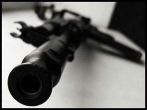 В охотничьих угодьях ведут себя, как хозяева. И нарушают лесное законодательство