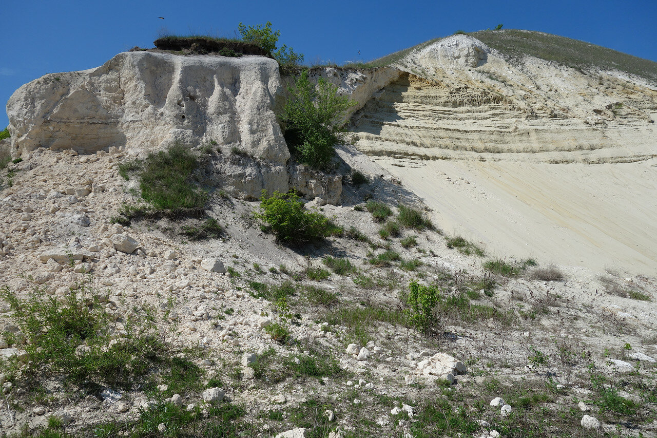 песчано-меловая осыпь с гнездами