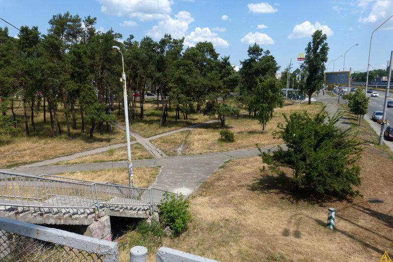67 квартал Дніпровського лісництва