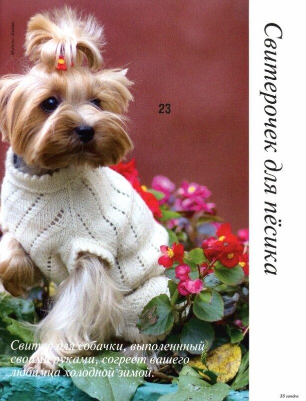 Вязание для собак - это