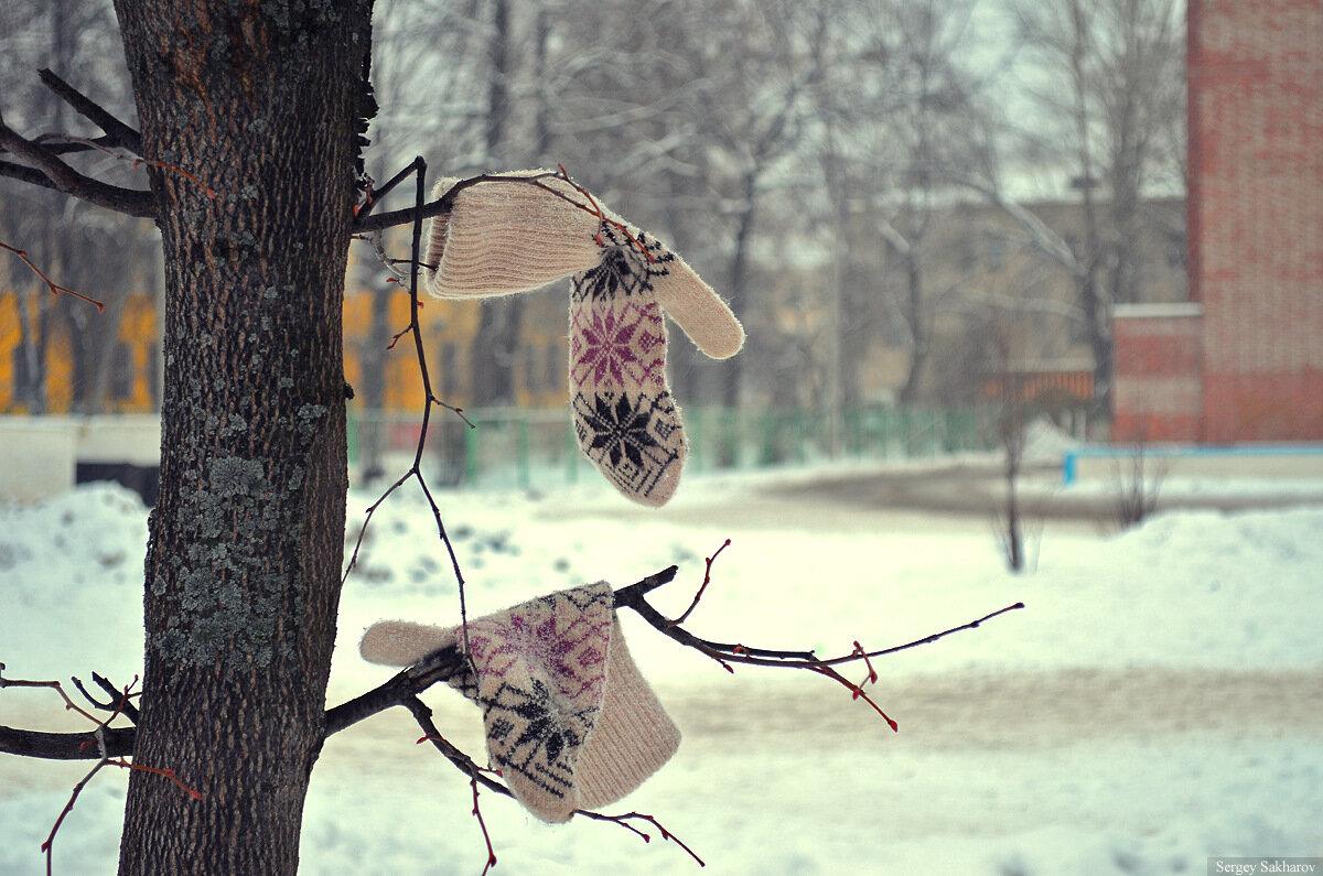 http://img-fotki.yandex.ru/get/4428/91538505.1c/0_7552e_f9fe9819_XXXL.jpg