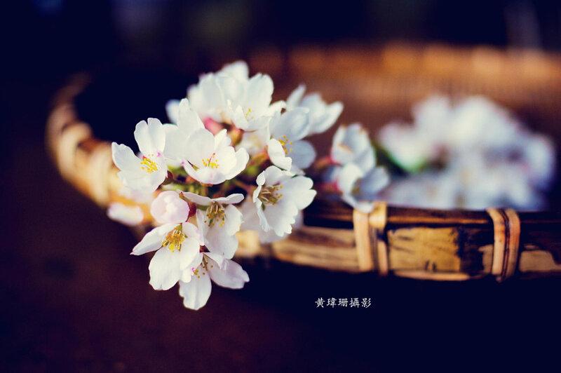 Wei-San Ooi