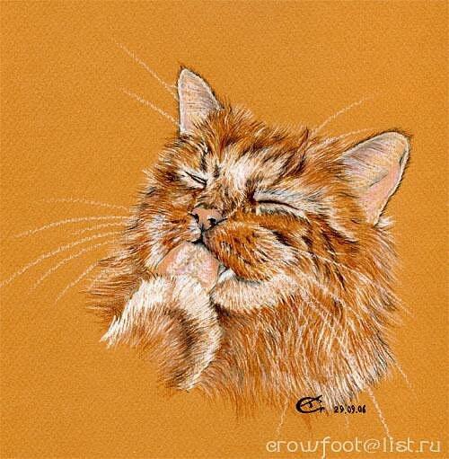"""таблица цветов.  Fardo.  Автор схемы  """"Кот """". схема.  Размеры: 186 x 190 крестов.  0. оригинал."""