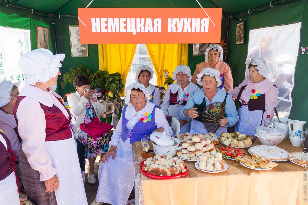 250 лет переселения немцев в Россию 11