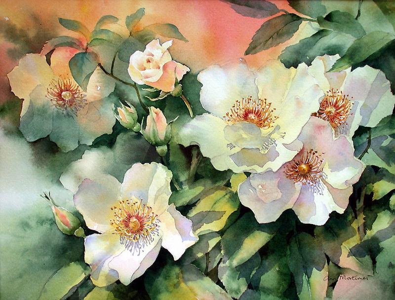 Акварельные цветы от Ann Mortimer. далее.