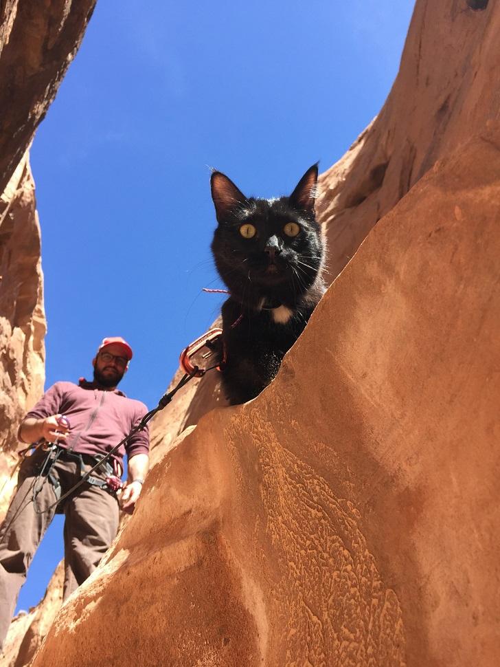 Кеннет и Милли в каньоне Энджел.