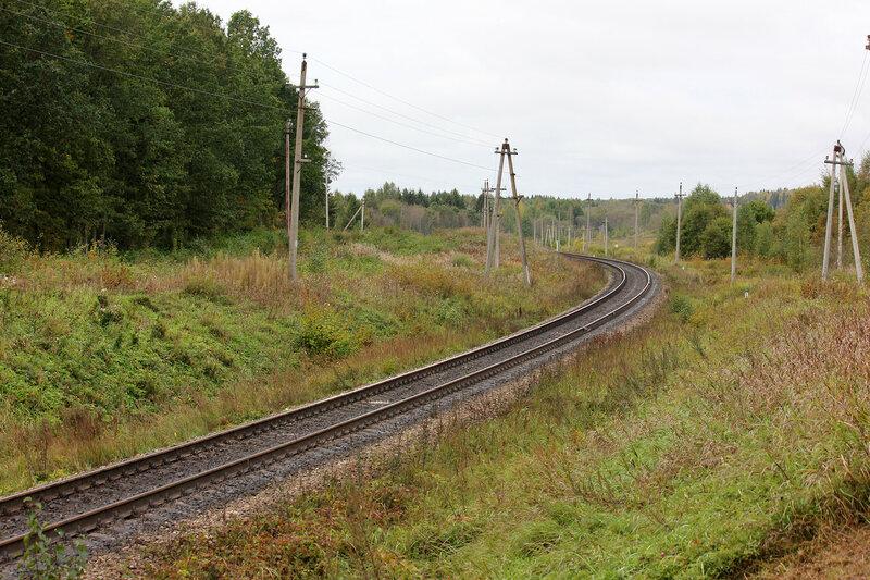 Кривые у переезда у платформы 354 км, перегон Подсосенка - Земцы