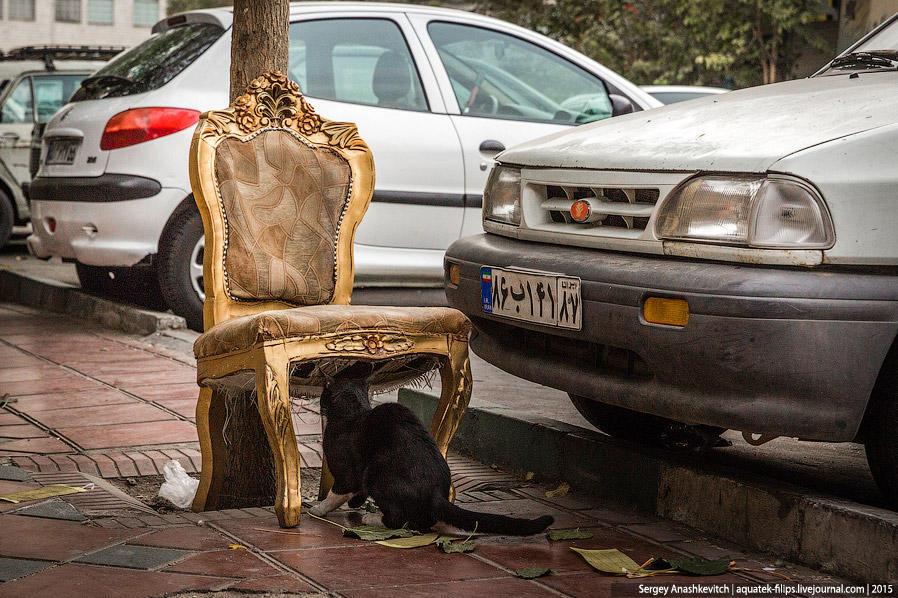 40. Часто на тегеранских улицах можно встретить странности и какие-то не совсем обычные вещи. Что де
