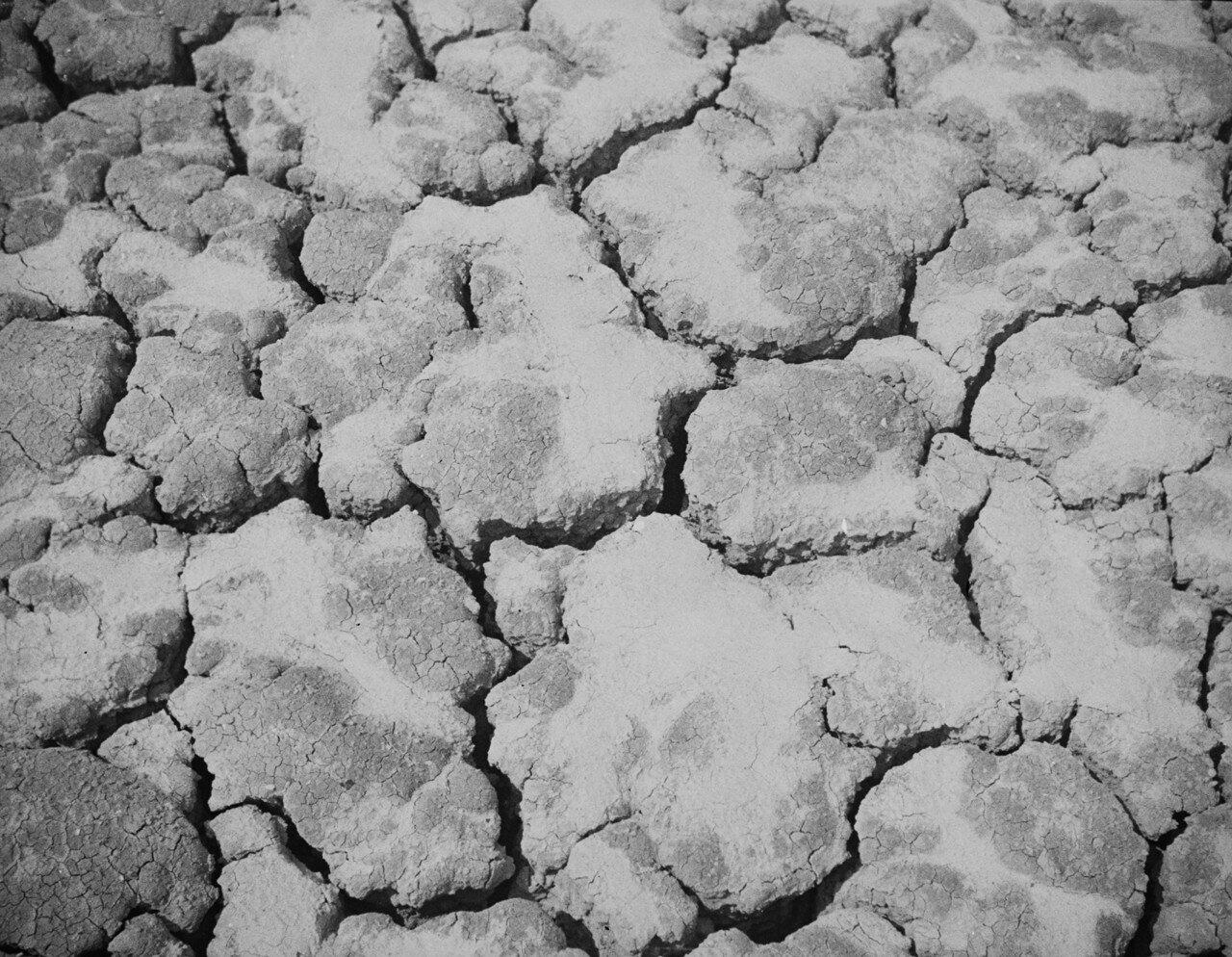 Южно-Сахалинский грязевой вулкан. Зона II (внешняя зона)