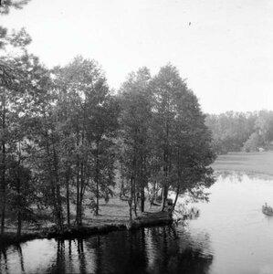 1904. Томилино. Вид на речку и лес