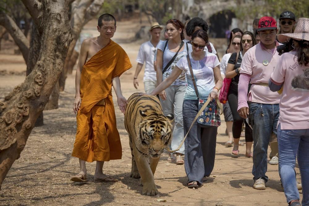 Храм Тигра в буддийском монастыре