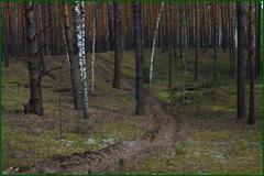 http://img-fotki.yandex.ru/get/44819/15842935.2dd/0_e30b2_578018ab_orig.png
