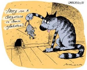 Могу ли я связвться со своим адвокатом Кот и мышка