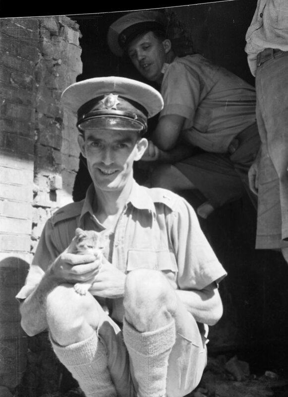 Shanghai (China), official with cat rescued from bombed building, 1937.