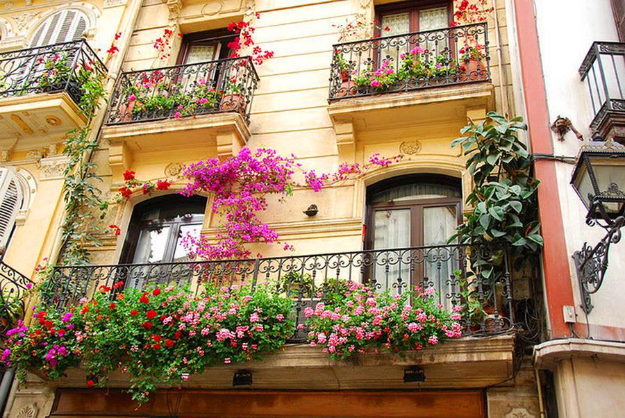 Красота цветущих балконов - нескучный сад.