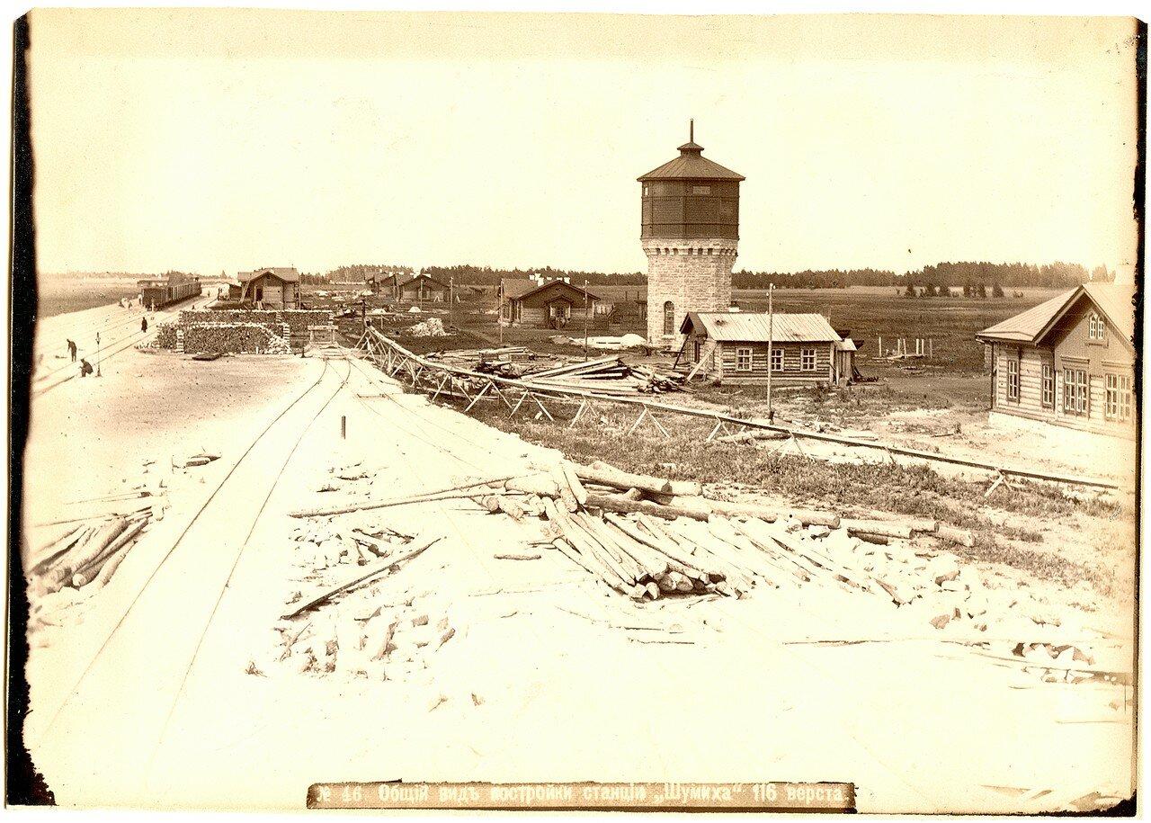 46. Общий вид постройки станции Шумиха, 116 верста