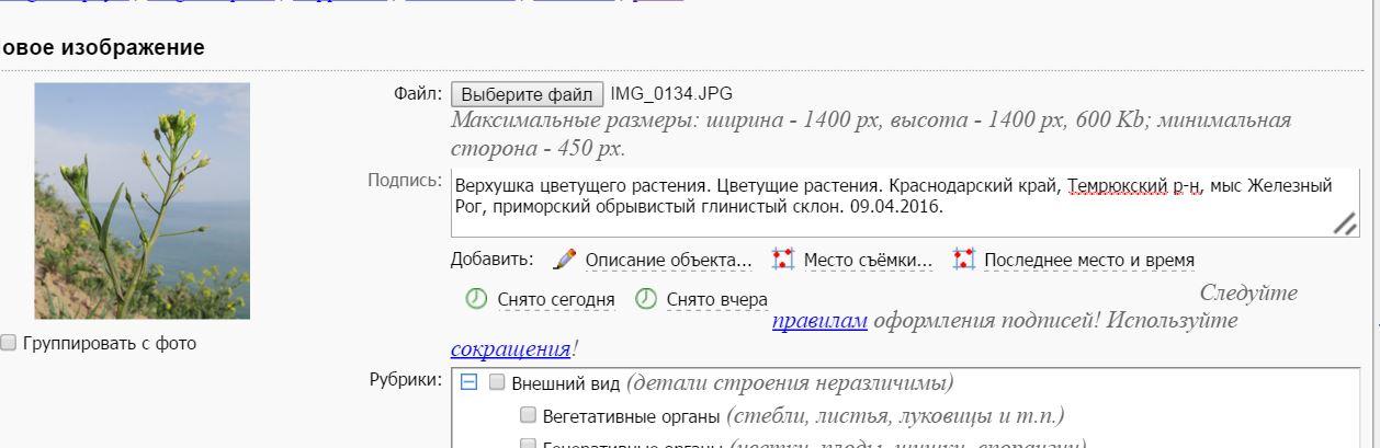 https://img-fotki.yandex.ru/get/44951/110468229.2d/0_1ec309_ce512a20_orig.jpg