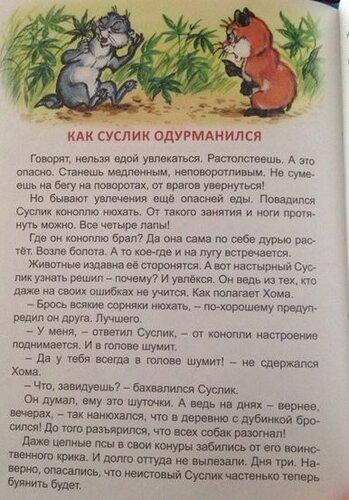 1458291605_suslik[1].jpg