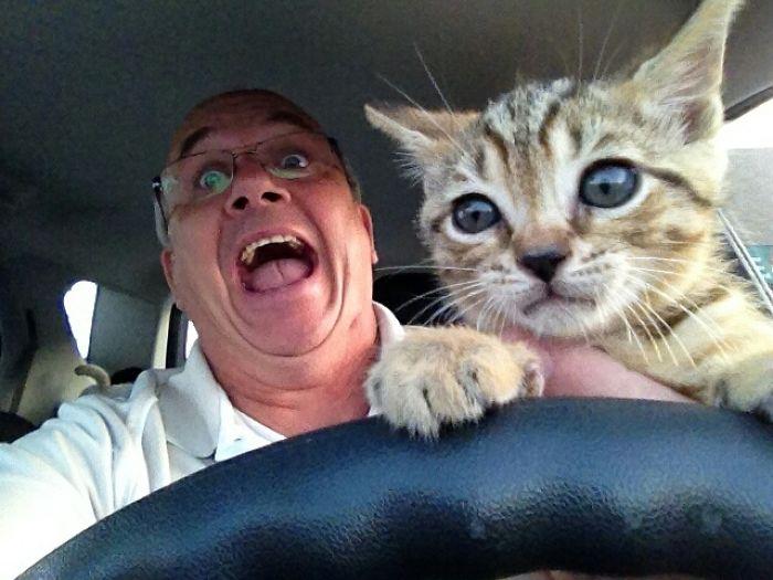 Отец сказал, что учит нашего котенка водить.