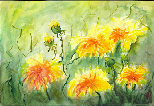 Желтые цветы.png