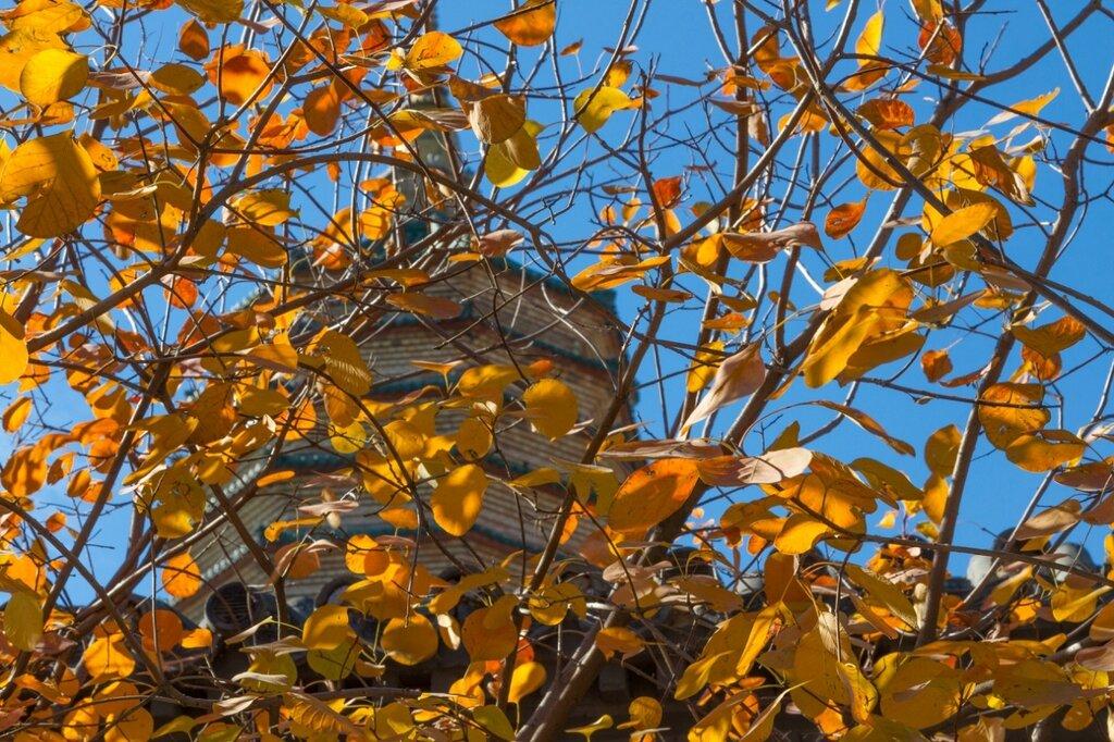 Осень в Бадачу