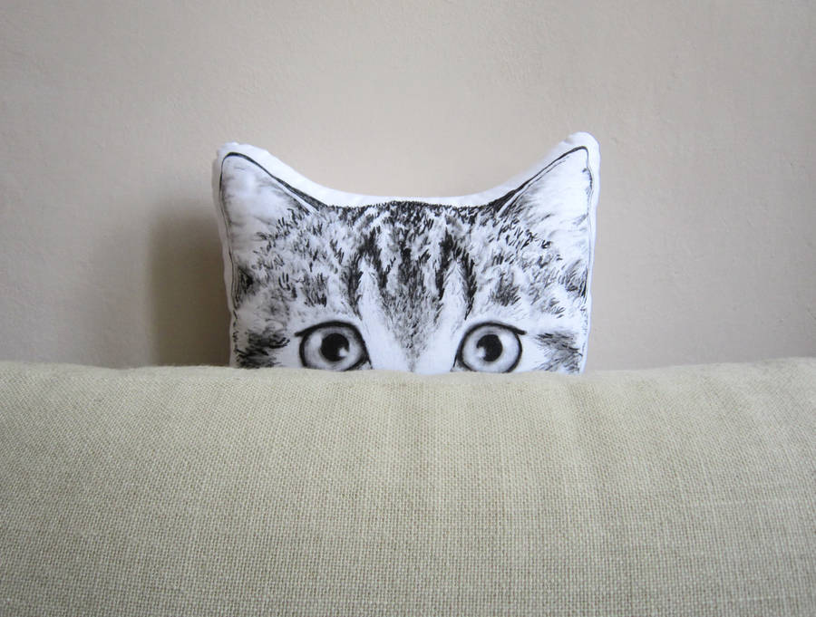 Cute Handpainted Animal Pillows (7 pics)