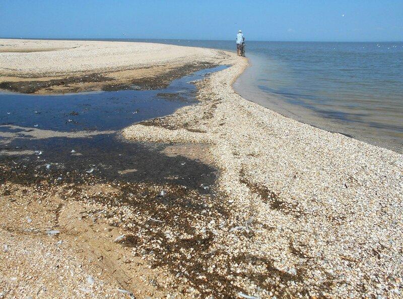На берегах дальних песков ... DSCN8193.JPG