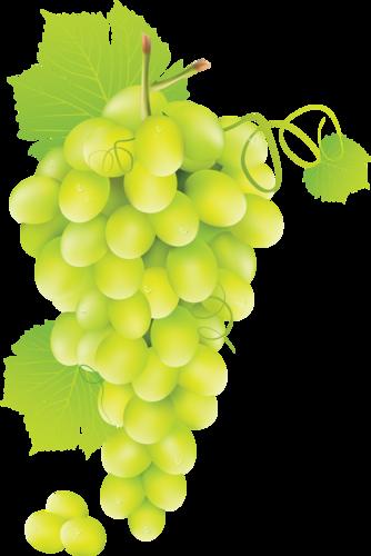 виноград (25).png