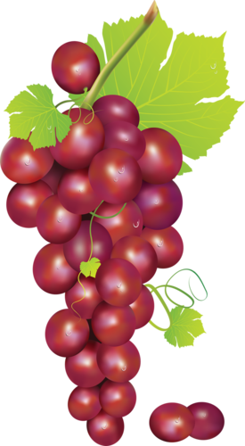 виноград (26).png
