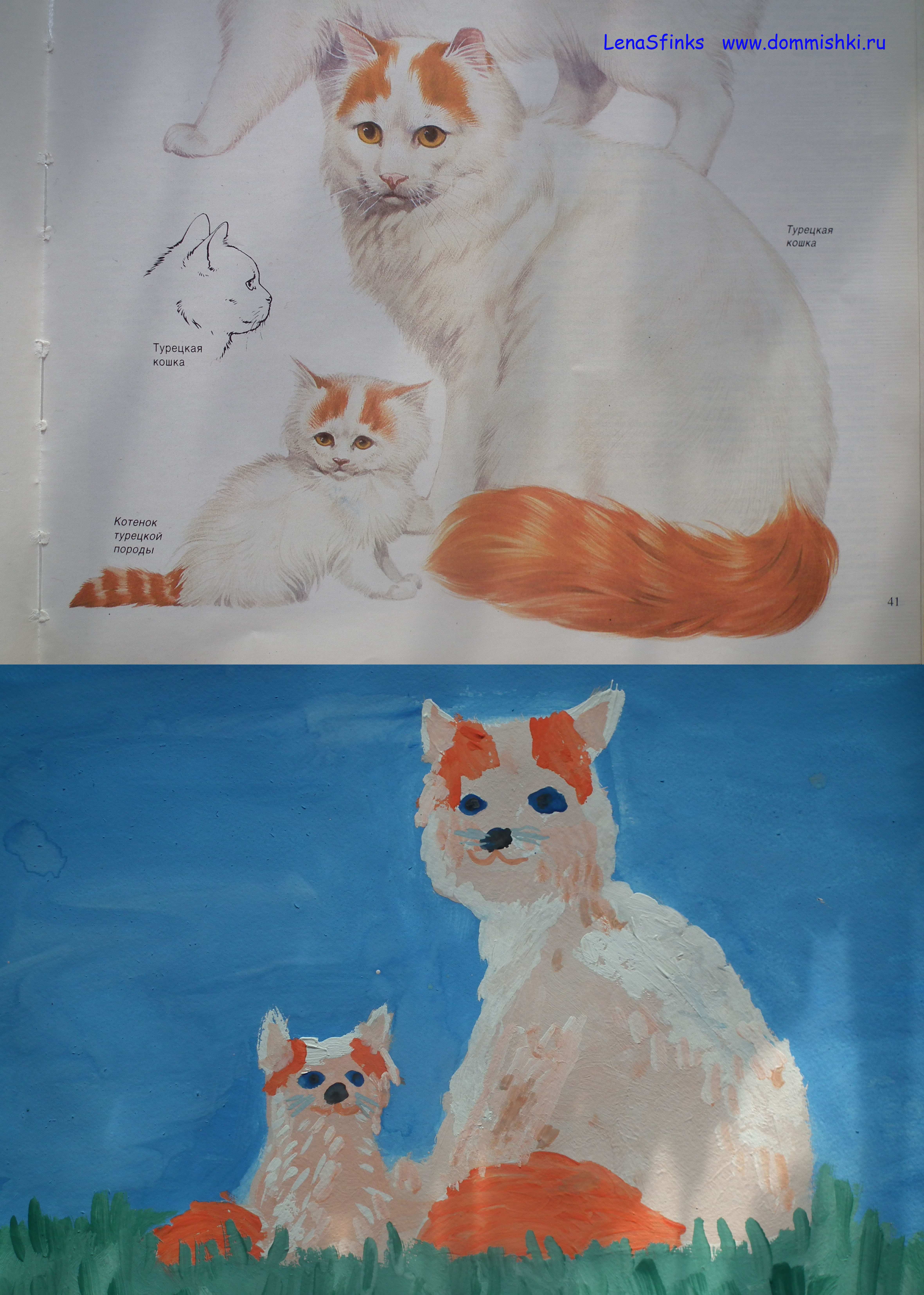 кошка3 - копия.jpg