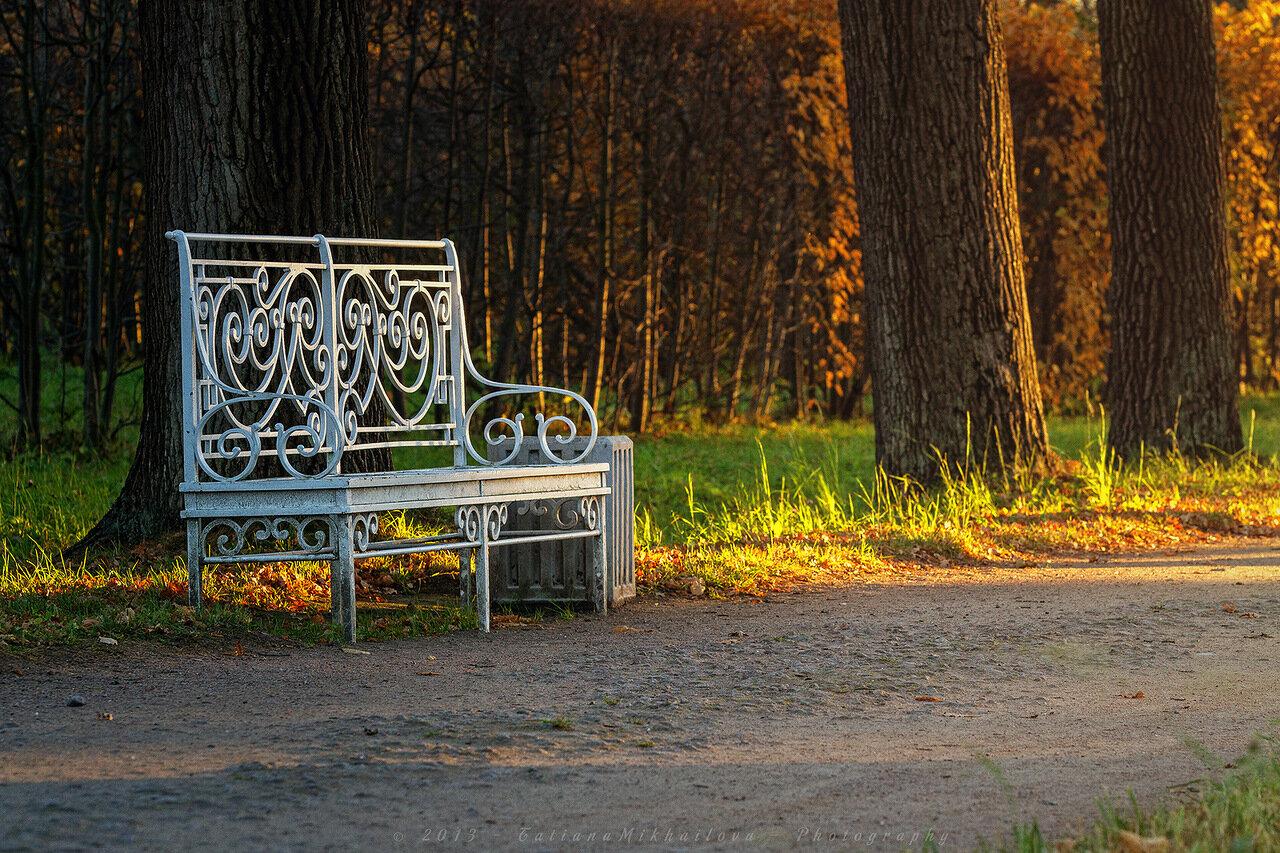 Осенняя скамейка в Пушкине