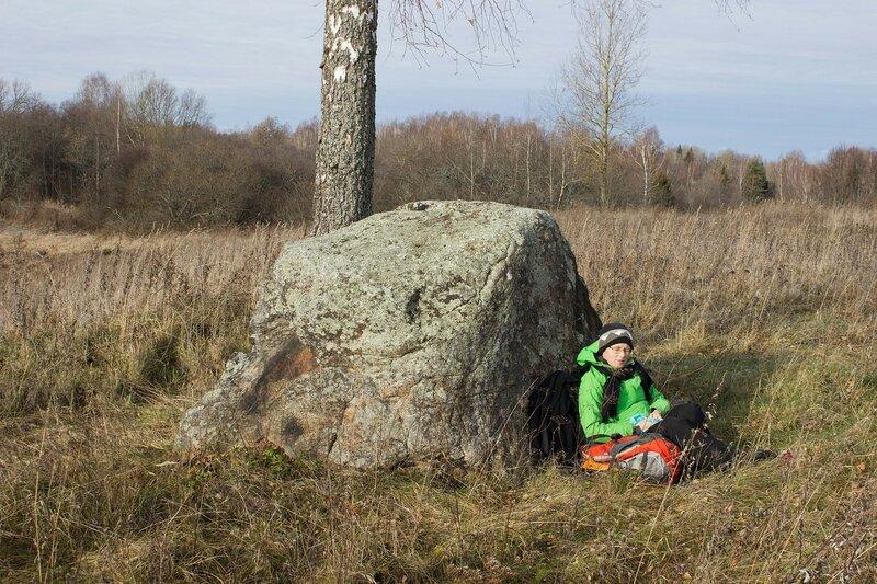камень в урочище Слозино, Псковская область
