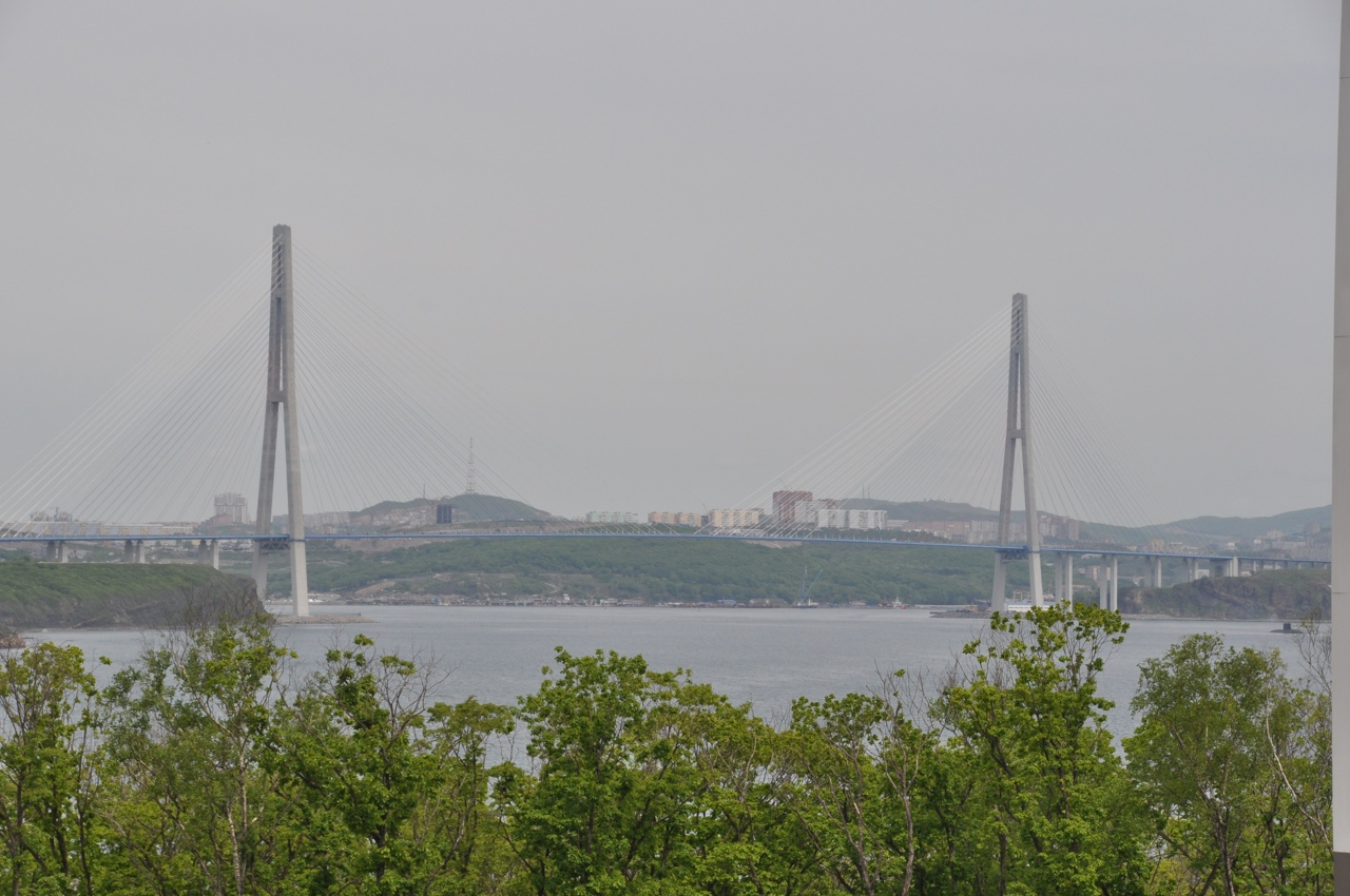Русский мост. Вид со стороны острова