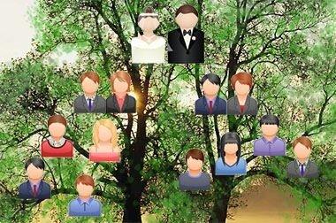 Родство через брак