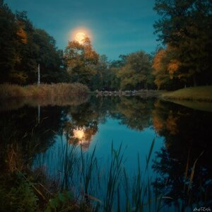 Луна над прудом