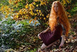 жёлтых листьев прекрасная вьюга