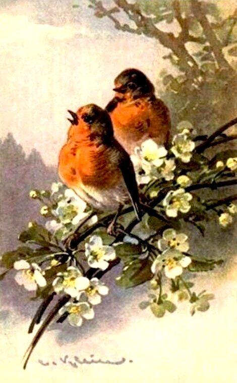 К. Кляйн. 58. Две птички на ветке.