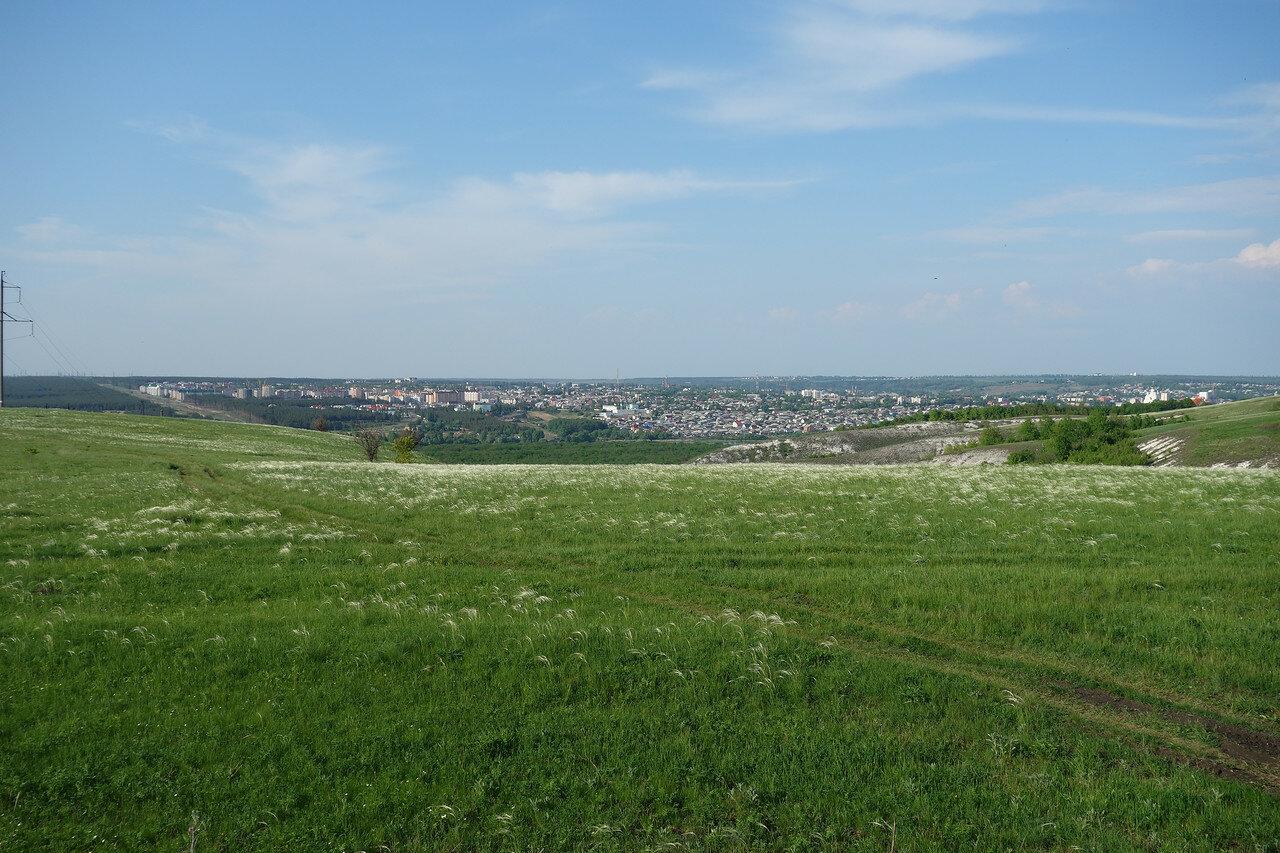 ковыль и город Лиски