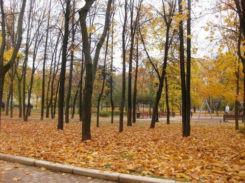 http://img-fotki.yandex.ru/get/4506/131884990.70/0_e577f_52a53113_L.jpg