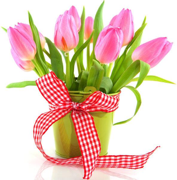 Вот пришла весна с подарком