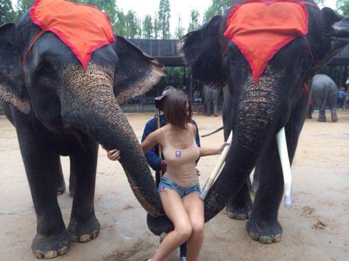 Фотосессия девушки привлекла внимание пользователей сети