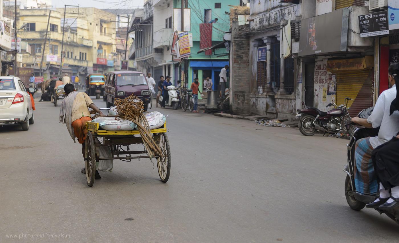 Фото 12. Грузовой велосипед в Варанаси. Отчет о путешествии по Индии. 1/1000, 2.8, 250, 56.