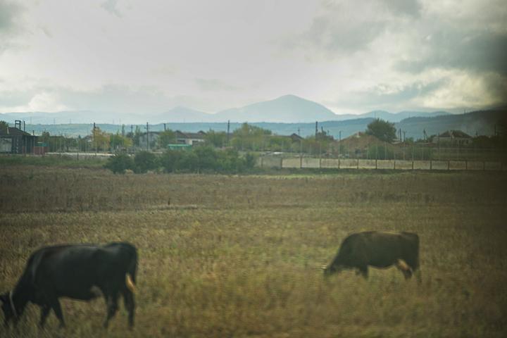 ландшафтная фотосъемка объектов. фотограф Кузьмин. фотографии природы Краснодара