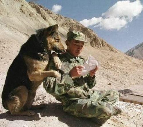 Смешные армейские будни hilarious_army_photos_28