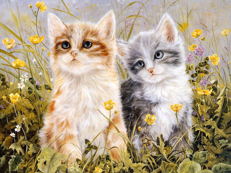 Вид картины:Картины с животными Картины с цветами.