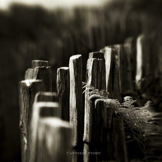 Фото работы от Karmen Orlic